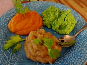 Trying out my baby's puree cookbook while limited to a mushy diet for a week